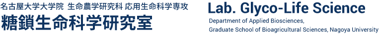 名古屋大学大学院 生命農学研究科 応用生命科学専攻 糖鎖生命科学研究室
